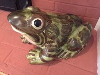 brushfrog